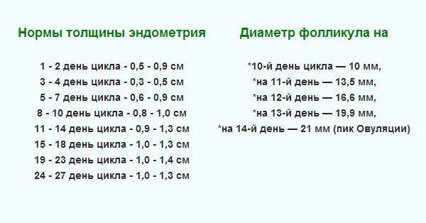 Приказе сколько в день растет фолликул Москве