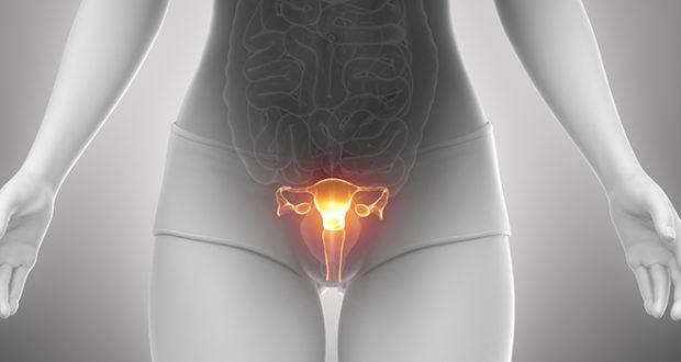 Умеренная дисплазия шейки матки: что это такое и как можно произвести лечение плоского эпителия легкой степени