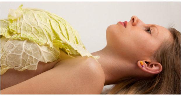 Капустный лист для груди